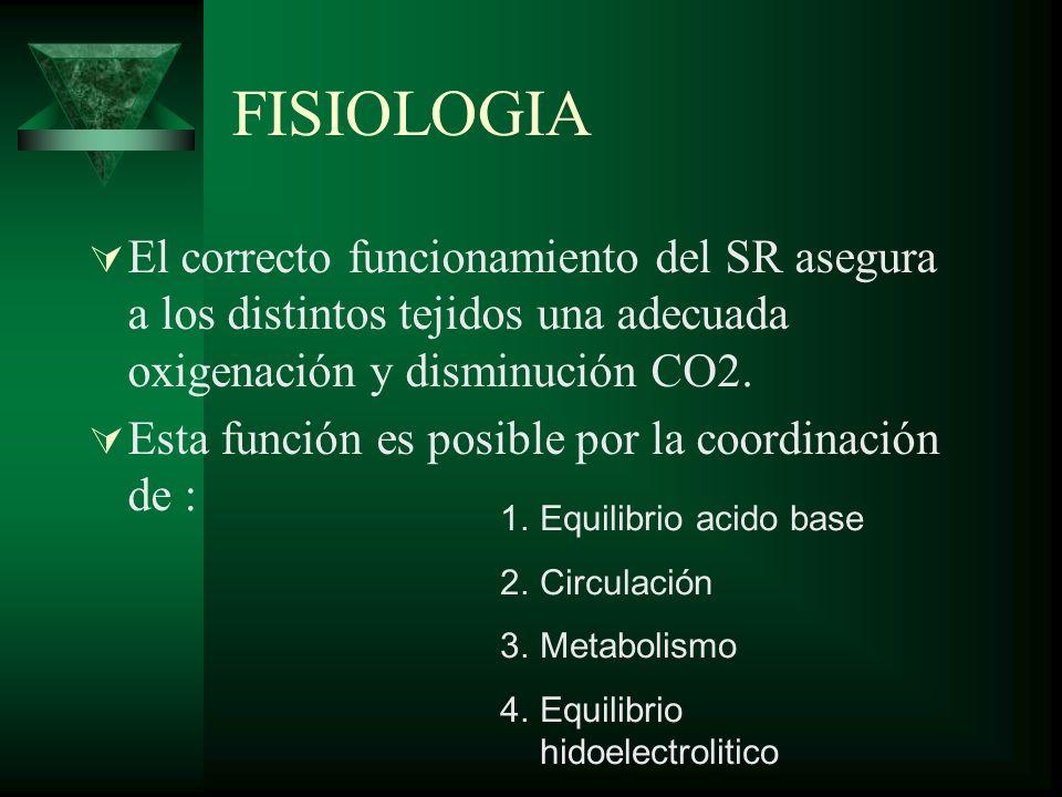 FISIOLOGIAEl correcto funcionamiento del SR asegura a los distintos tejidos una adecuada oxigenación y disminución CO2.