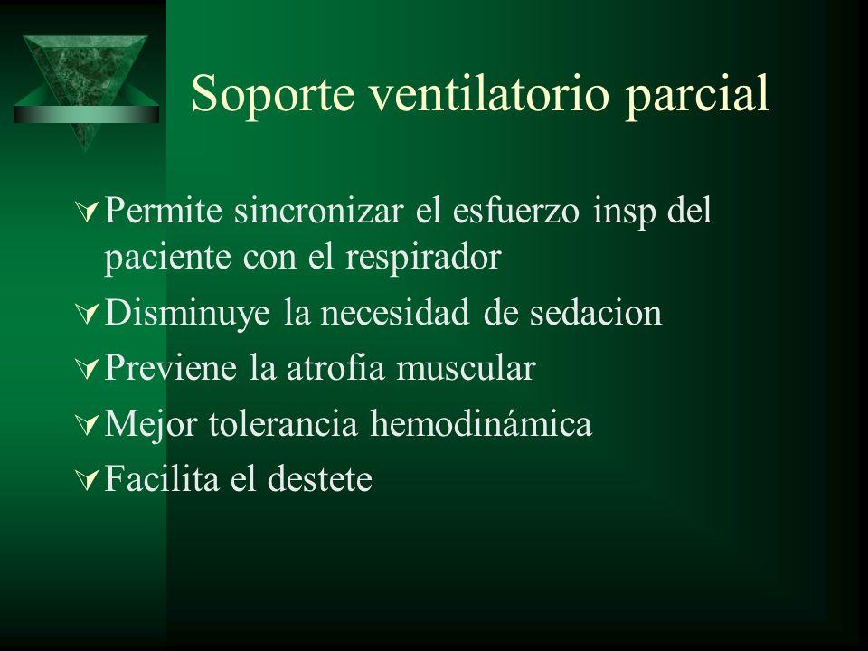 Soporte ventilatorio parcial