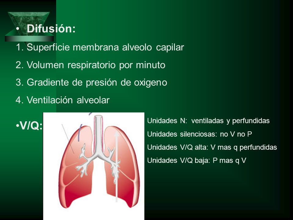 Difusión: V/Q: Superficie membrana alveolo capilar