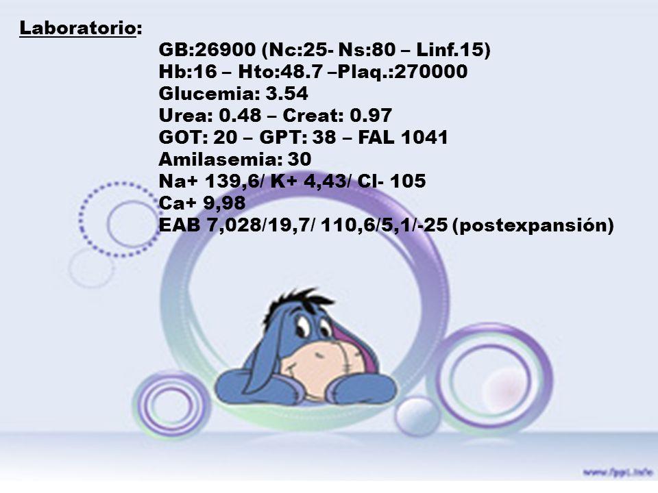 Laboratorio:GB:26900 (Nc:25- Ns:80 – Linf.15) Hb:16 – Hto:48.7 –Plaq.:270000. Glucemia: 3.54. Urea: 0.48 – Creat: 0.97.