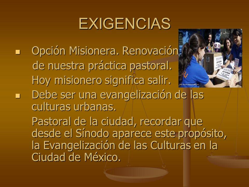 EXIGENCIAS Opción Misionera. Renovación de nuestra práctica pastoral.
