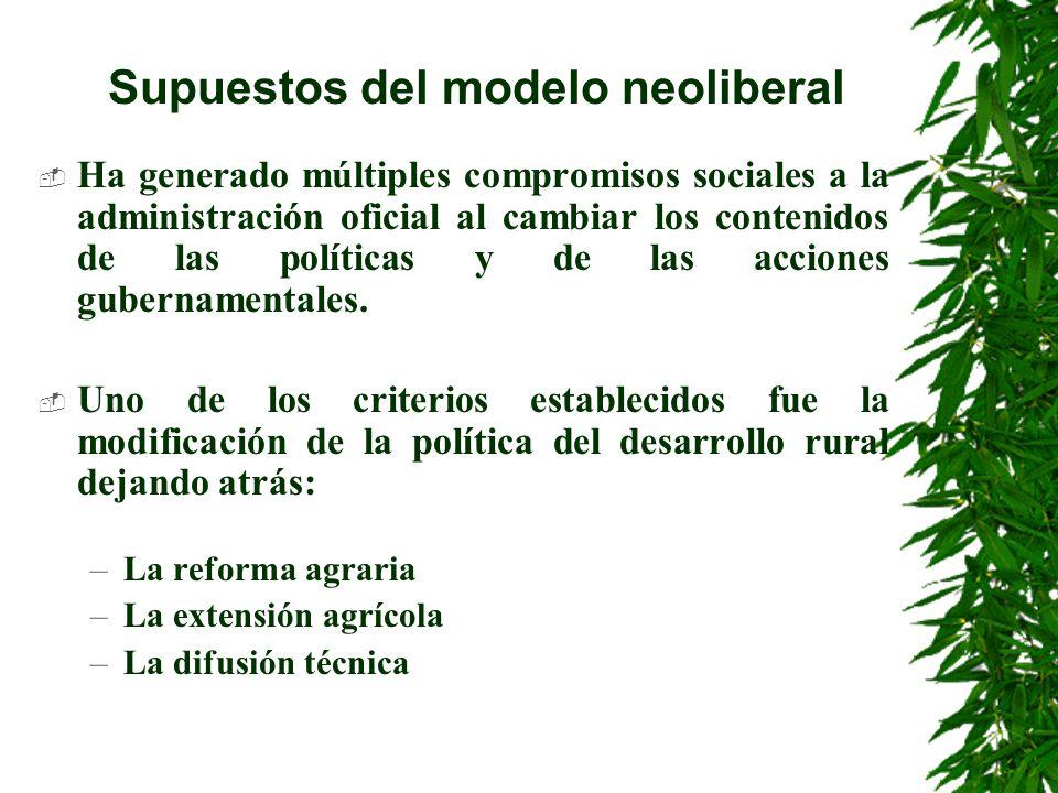 Supuestos del modelo neoliberal