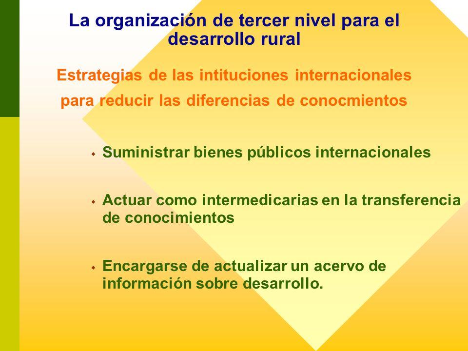 La organización de tercer nivel para el desarrollo rural Estrategias de las intituciones internacionales para reducir las diferencias de conocmientos