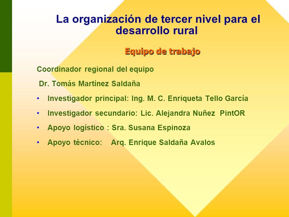 La organización de tercer nivel para el desarrollo rural Equipo de trabajo