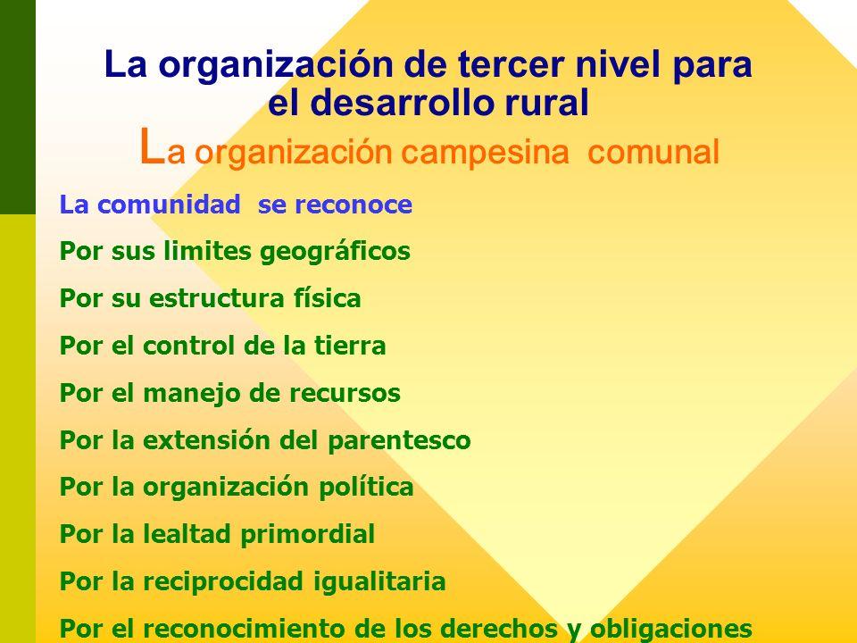 La organización de tercer nivel para el desarrollo rural La organización campesina comunal