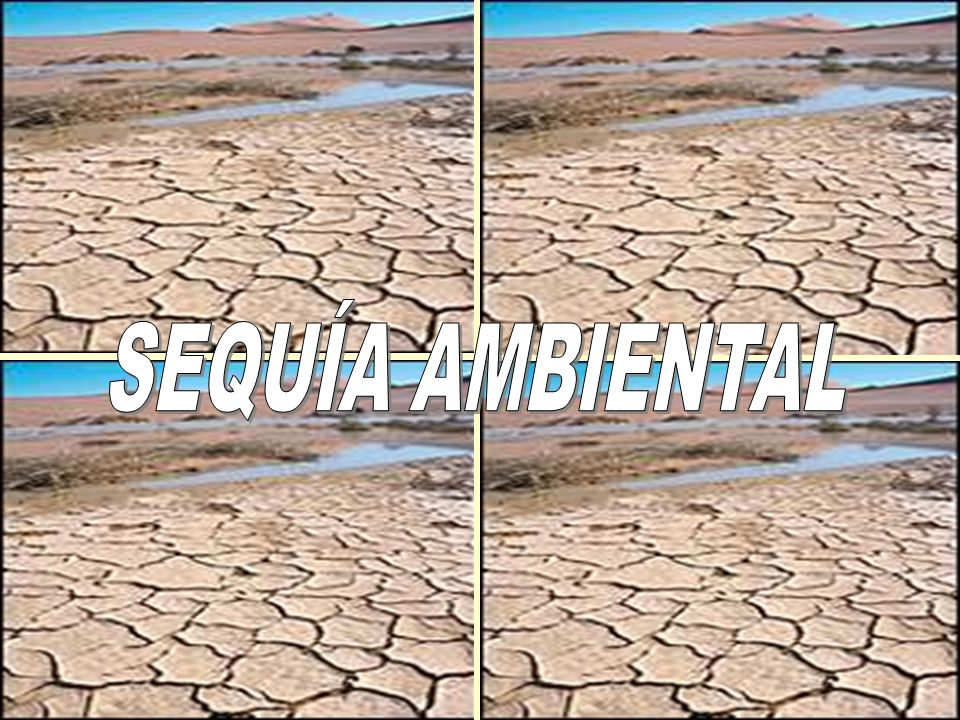 SEQUÍA AMBIENTAL