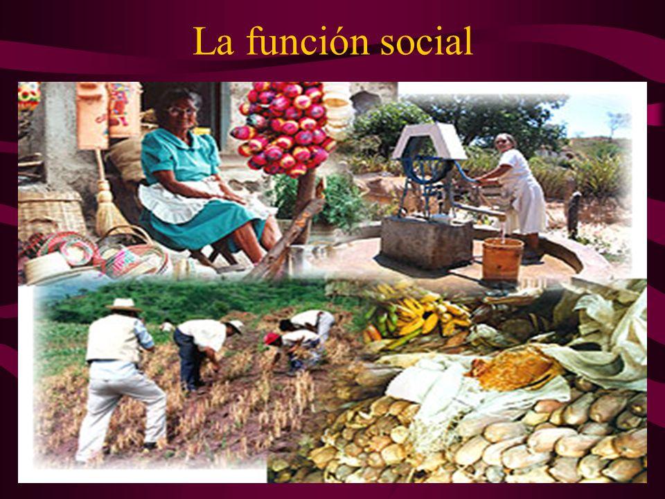 La función social