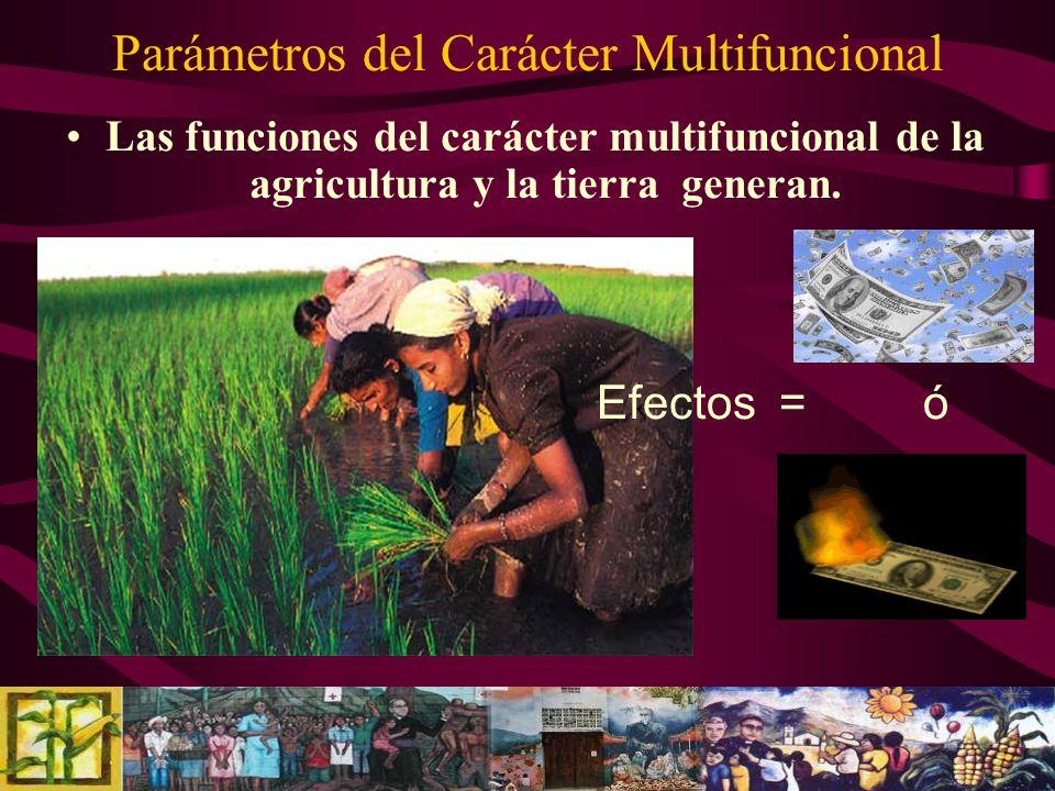 Parámetros del Carácter Multifuncional