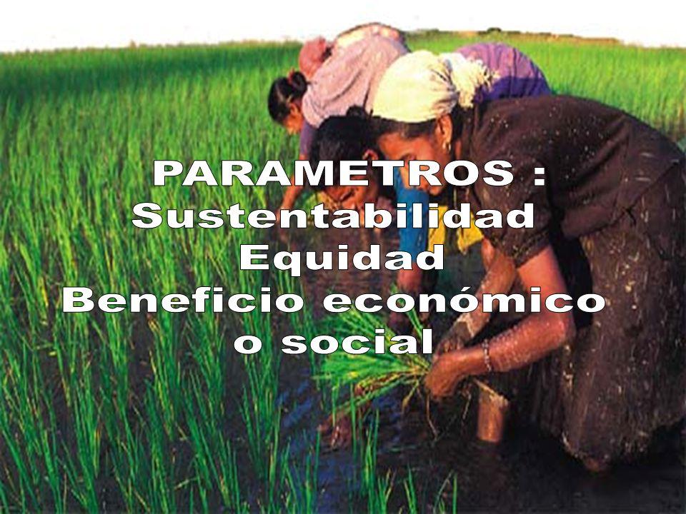 PARAMETROS : Sustentabilidad Equidad Beneficio económico o social
