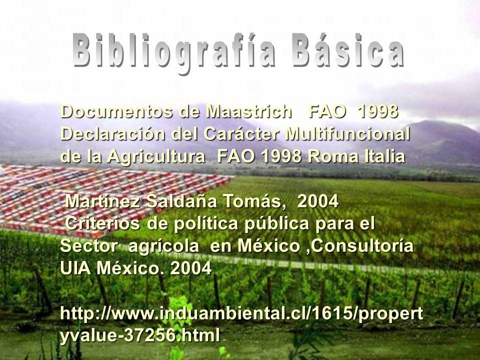 Bibliografía Básica Documentos de Maastrich FAO 1998