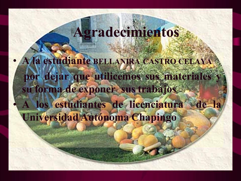 Agradecimientos A la estudiante BELLANIRA CASTRO CELAYA