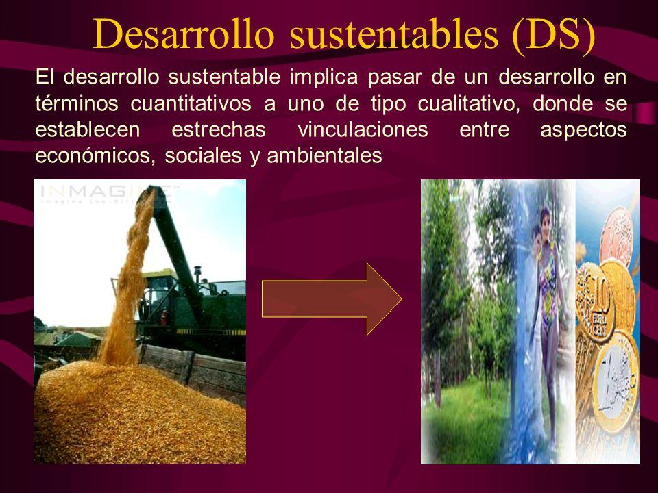 Desarrollo sustentables (DS)