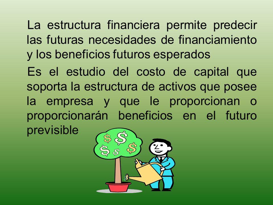 MARCO CONCEPTUAL La estructura financiera permite predecir las futuras necesidades de financiamiento y los beneficios futuros esperados.