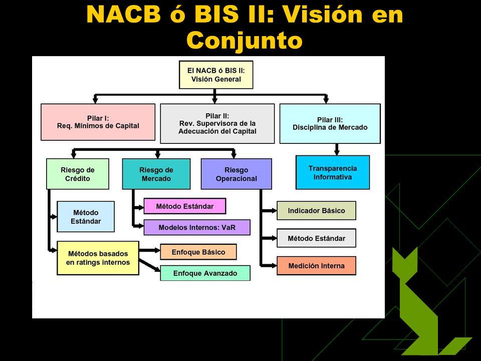 NACB ó BIS II: Visión en Conjunto