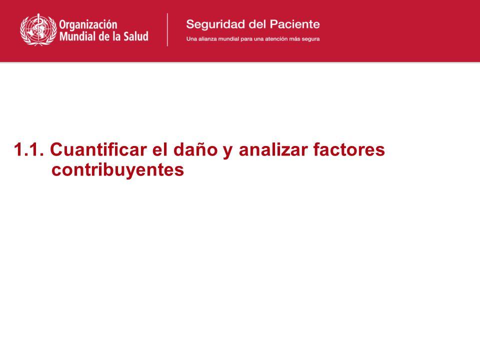 1.1. Cuantificar el daño y analizar factores contribuyentes