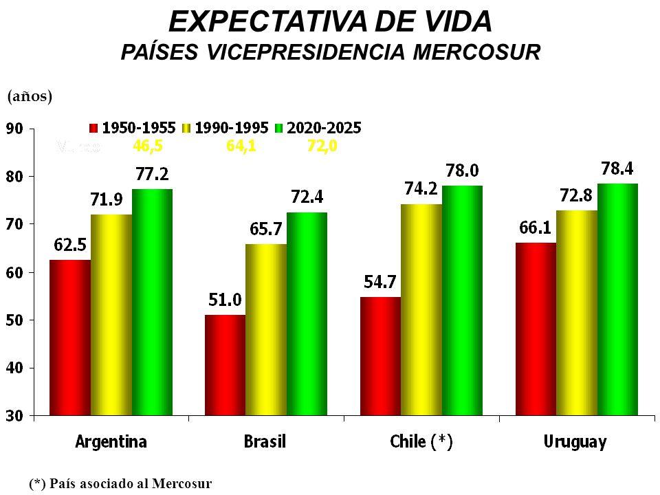 PAÍSES VICEPRESIDENCIA MERCOSUR