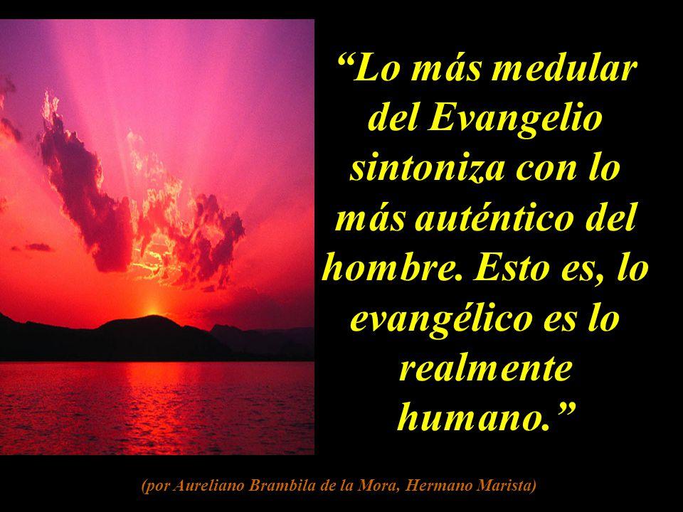 (por Aureliano Brambila de la Mora, Hermano Marista)