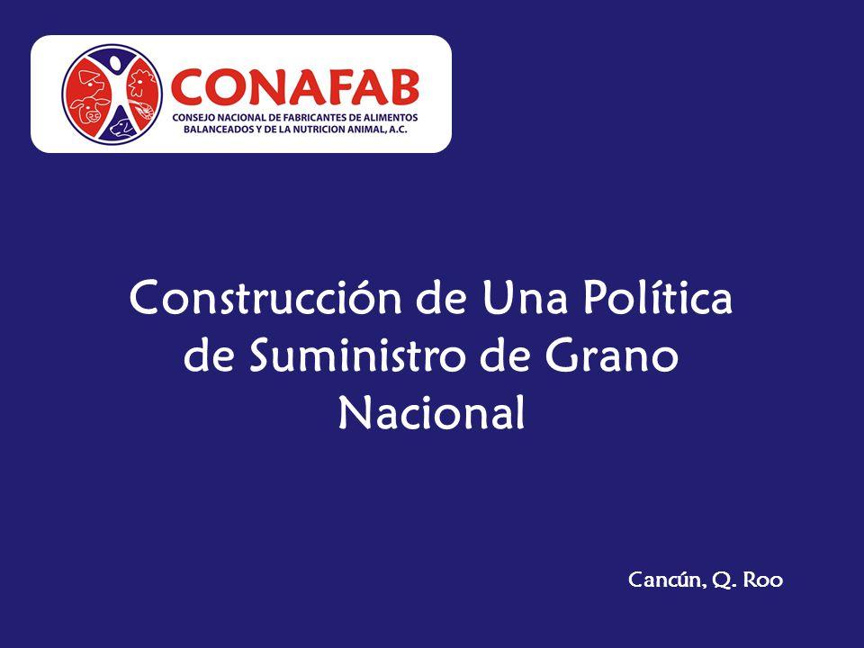 Construcción de Una Política de Suministro de Grano Nacional