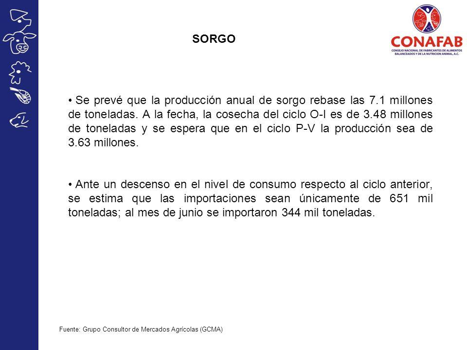 SORGO