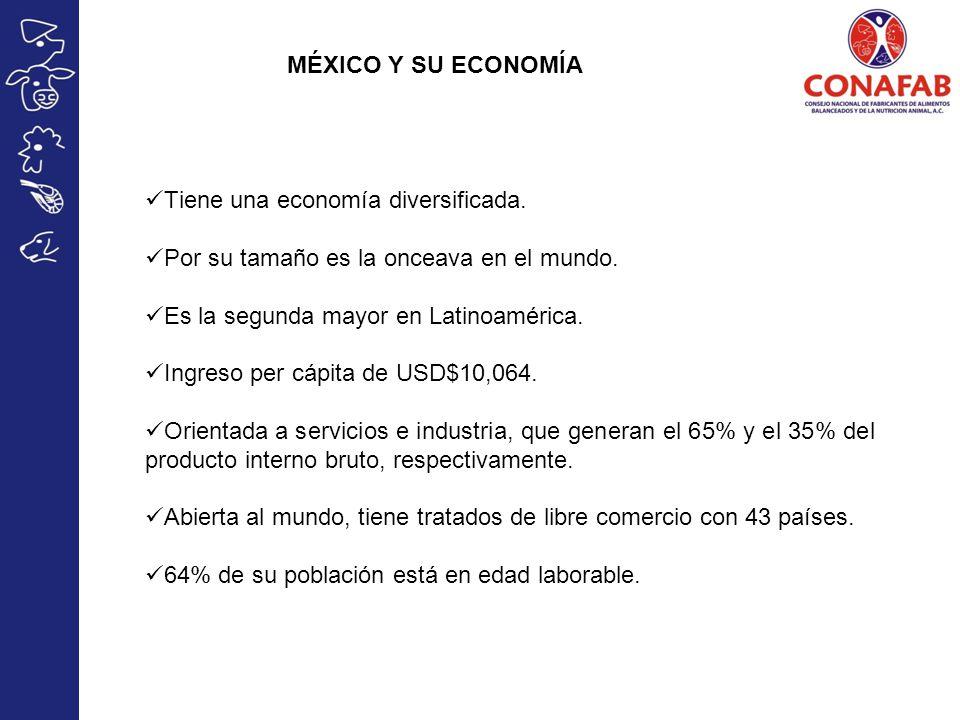 MÉXICO Y SU ECONOMÍA Tiene una economía diversificada. Por su tamaño es la onceava en el mundo. Es la segunda mayor en Latinoamérica.