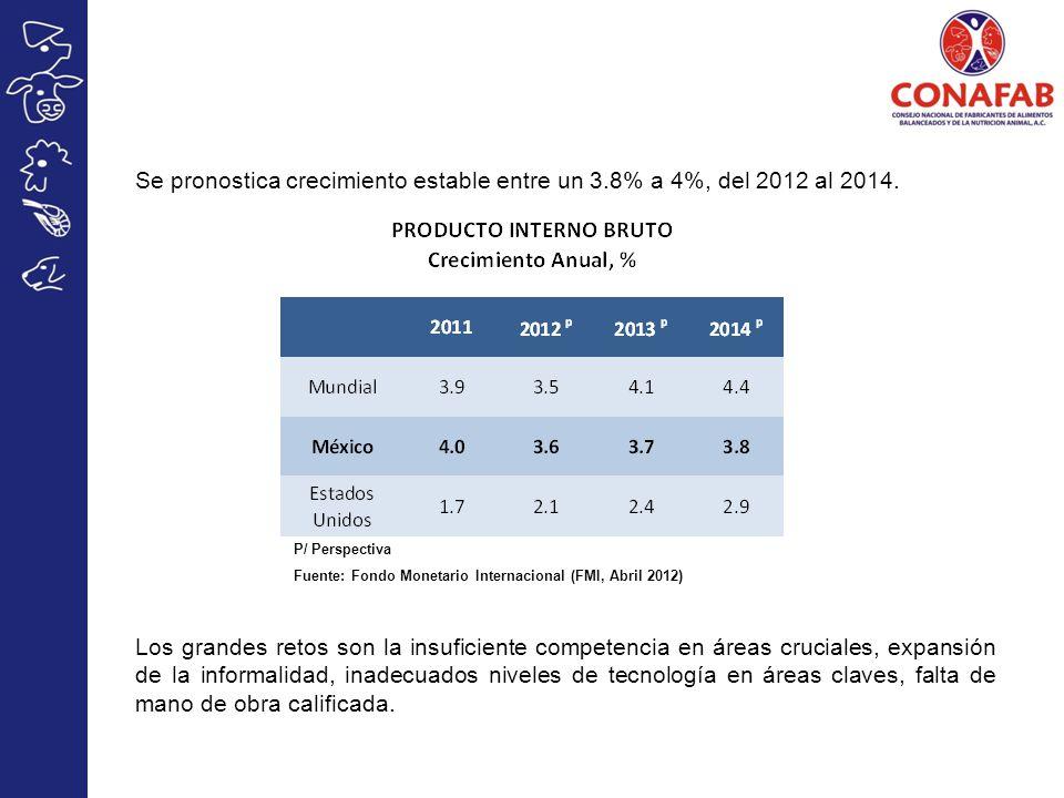 Se pronostica crecimiento estable entre un 3.8% a 4%, del 2012 al 2014.