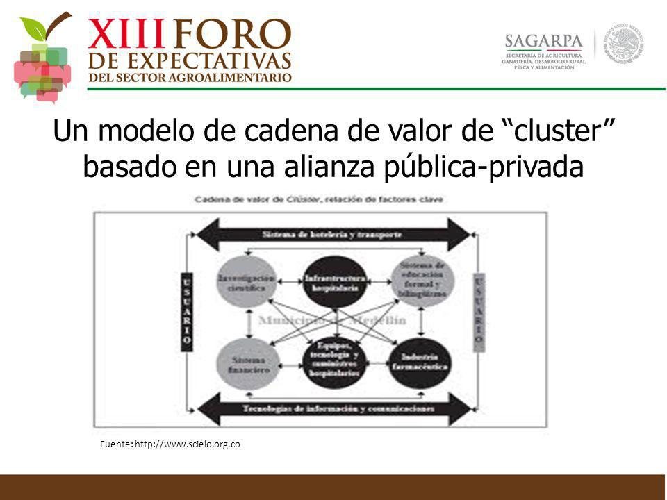 Un modelo de cadena de valor de cluster basado en una alianza pública-privada