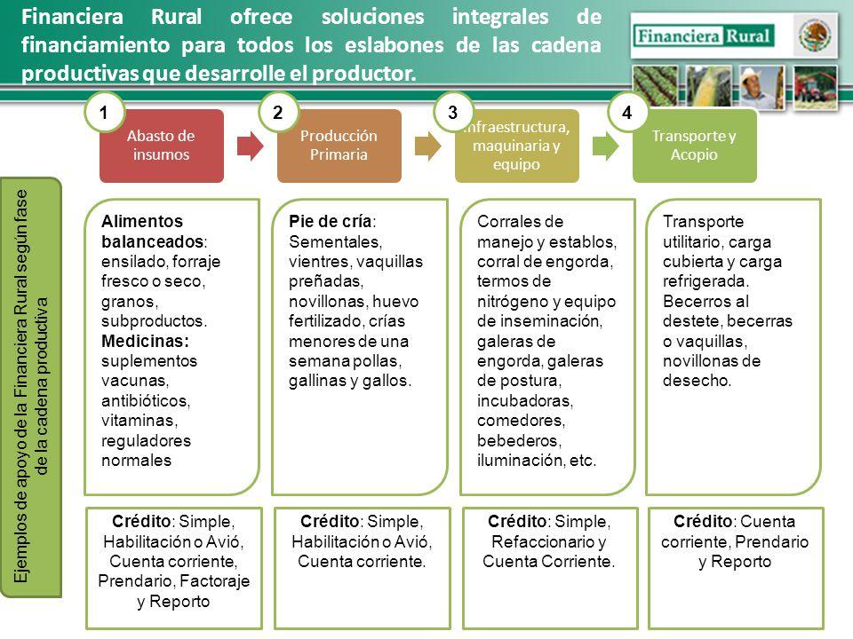 Financiera Rural ofrece soluciones integrales de financiamiento para todos los eslabones de las cadena productivas que desarrolle el productor.