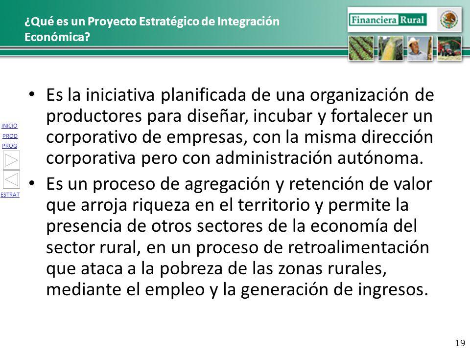 ¿Qué es un Proyecto Estratégico de Integración Económica