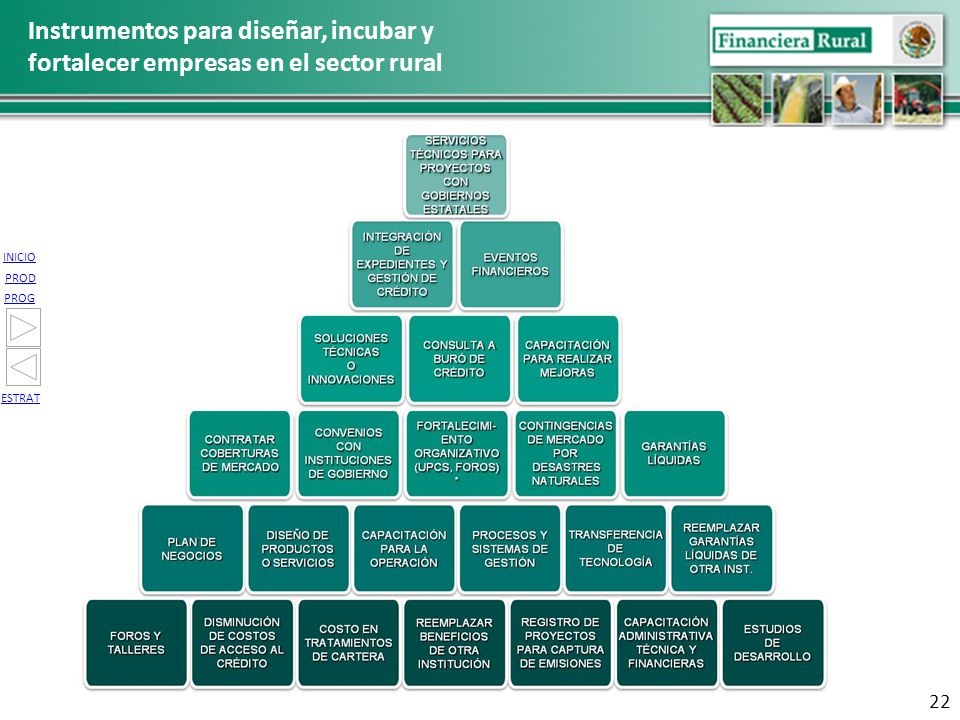Instrumentos para diseñar, incubar y fortalecer empresas en el sector rural