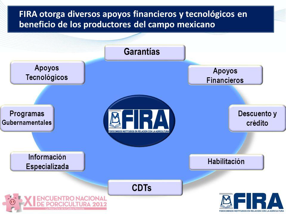 Programas Gubernamentales Información Especializada