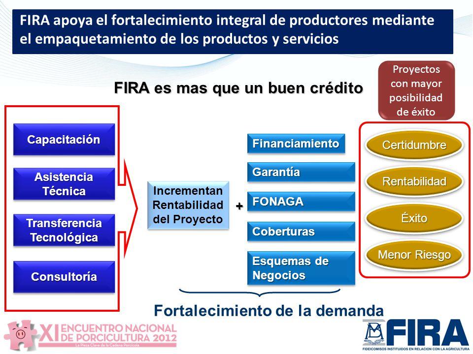 FIRA es mas que un buen crédito Fortalecimiento de la demanda
