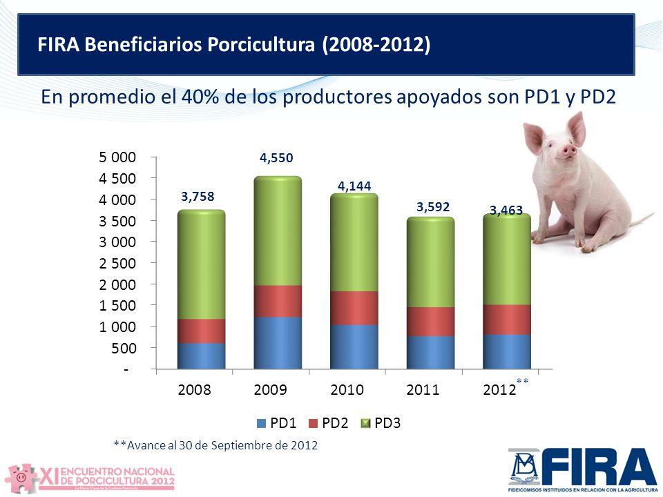 FIRA Beneficiarios Porcicultura (2008-2012)