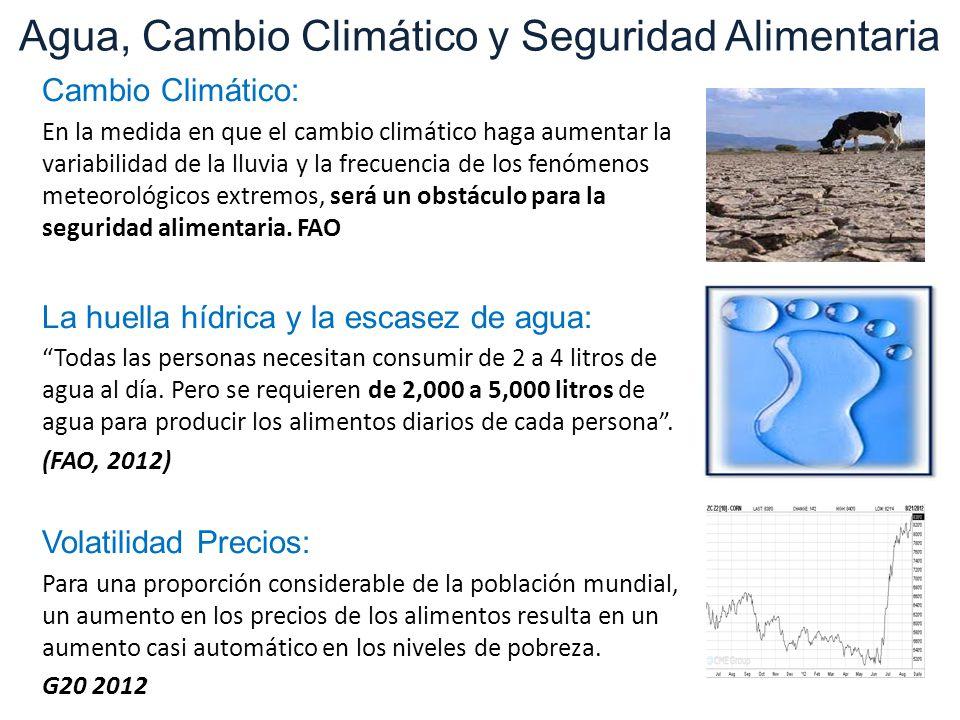 Agua, Cambio Climático y Seguridad Alimentaria