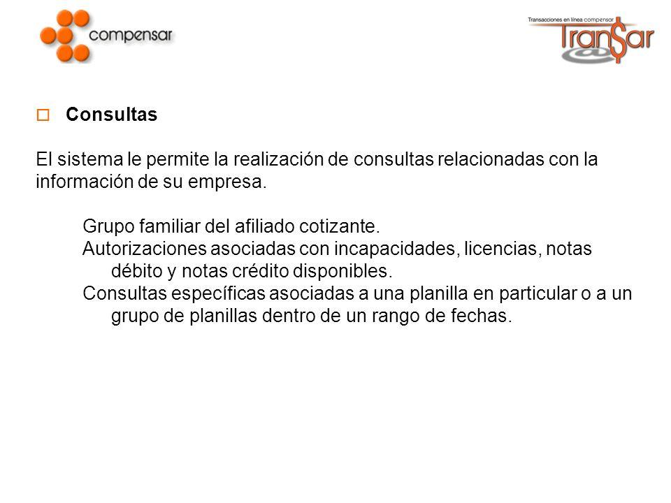 Consultas El sistema le permite la realización de consultas relacionadas con la información de su empresa.