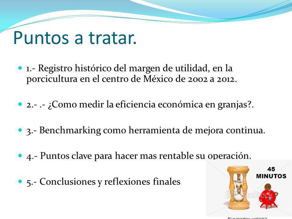Puntos a tratar. 1.- Registro histórico del margen de utilidad, en la porcicultura en el centro de México de 2002 a 2012.