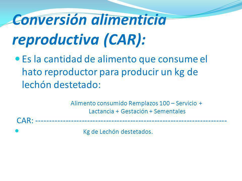 Conversión alimenticia reproductiva (CAR):