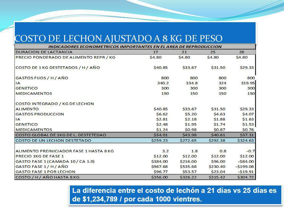 COSTO DE LECHON AJUSTADO A 8 KG DE PESO