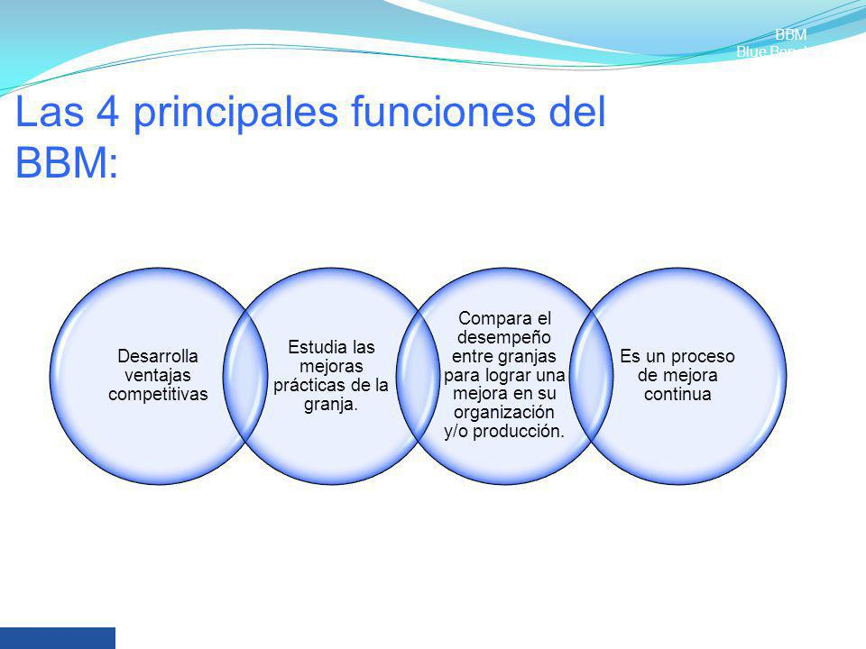 Las 4 principales funciones del BBM:
