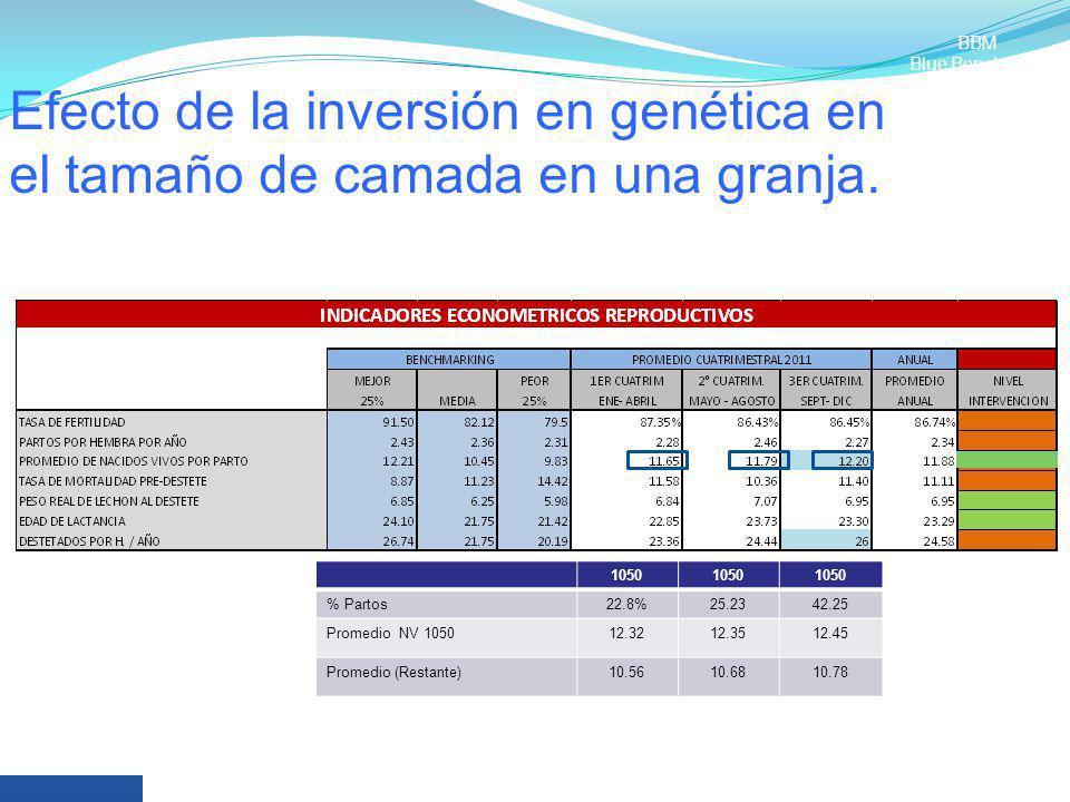 BBM Blue Benchmark. Efecto de la inversión en genética en el tamaño de camada en una granja. 1050.