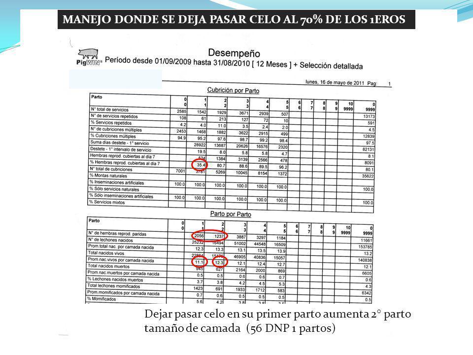 MANEJO DONDE SE DEJA PASAR CELO AL 70% DE LOS 1EROS PARTOS