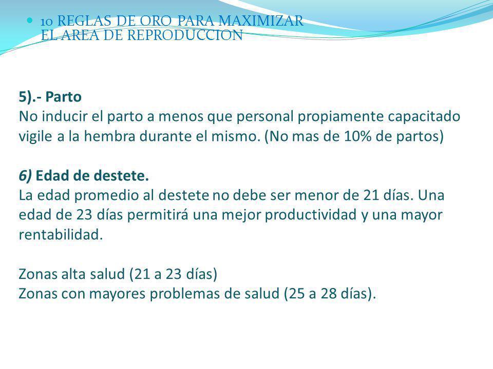 Zonas alta salud (21 a 23 días)