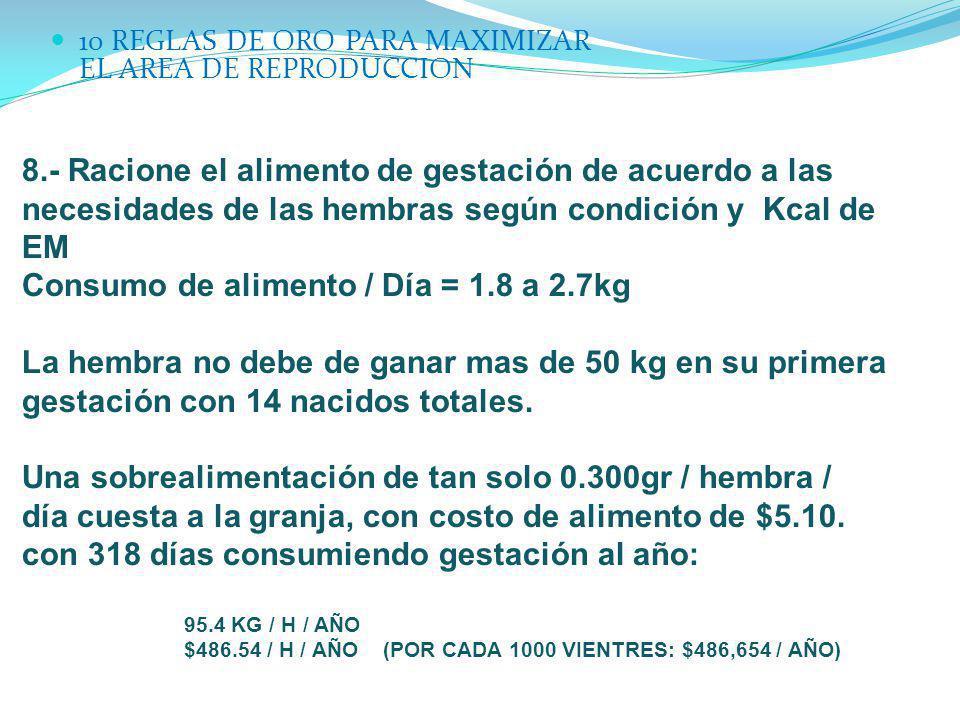 Consumo de alimento / Día = 1.8 a 2.7kg
