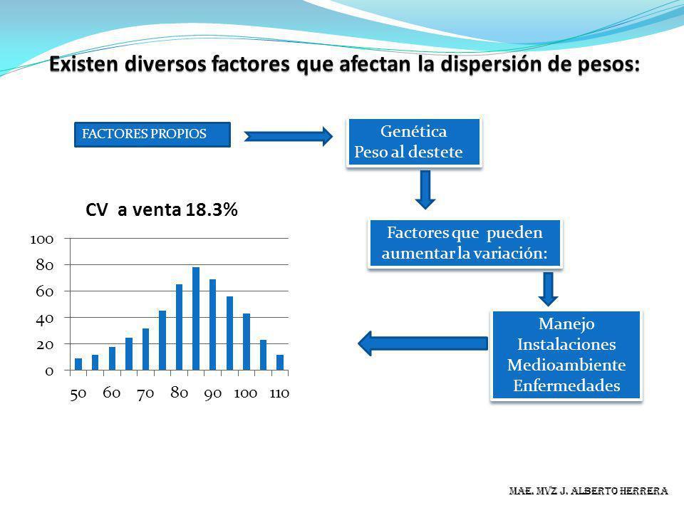 Existen diversos factores que afectan la dispersión de pesos: