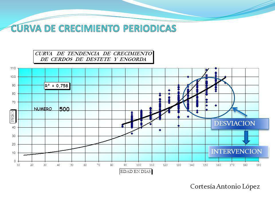 CURVA DE CRECIMIENTO PERIODICAS