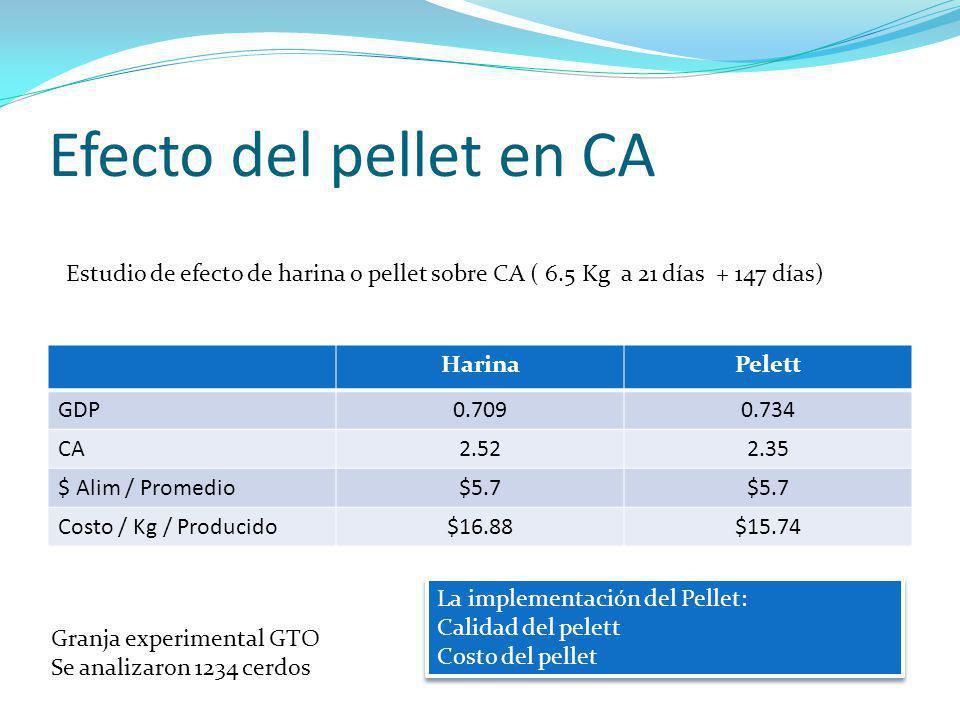 Efecto del pellet en CA Estudio de efecto de harina o pellet sobre CA ( 6.5 Kg a 21 días + 147 días)