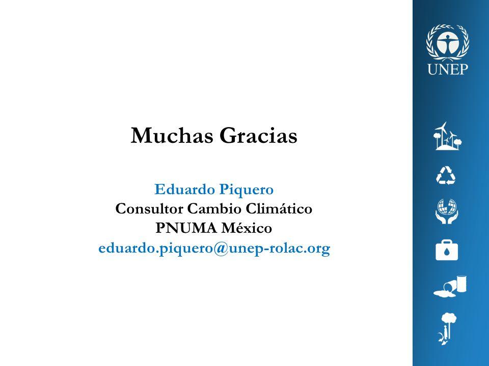 Muchas Gracias Eduardo Piquero Consultor Cambio Climático PNUMA México eduardo.piquero@unep-rolac.org