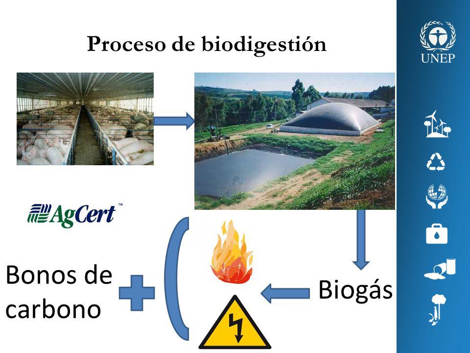 Proceso de biodigestión