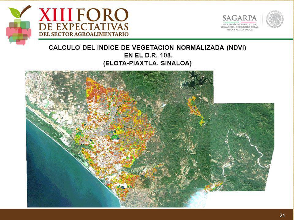 CALCULO DEL INDICE DE VEGETACION NORMALIZADA (NDVI) EN EL D.R. 108.