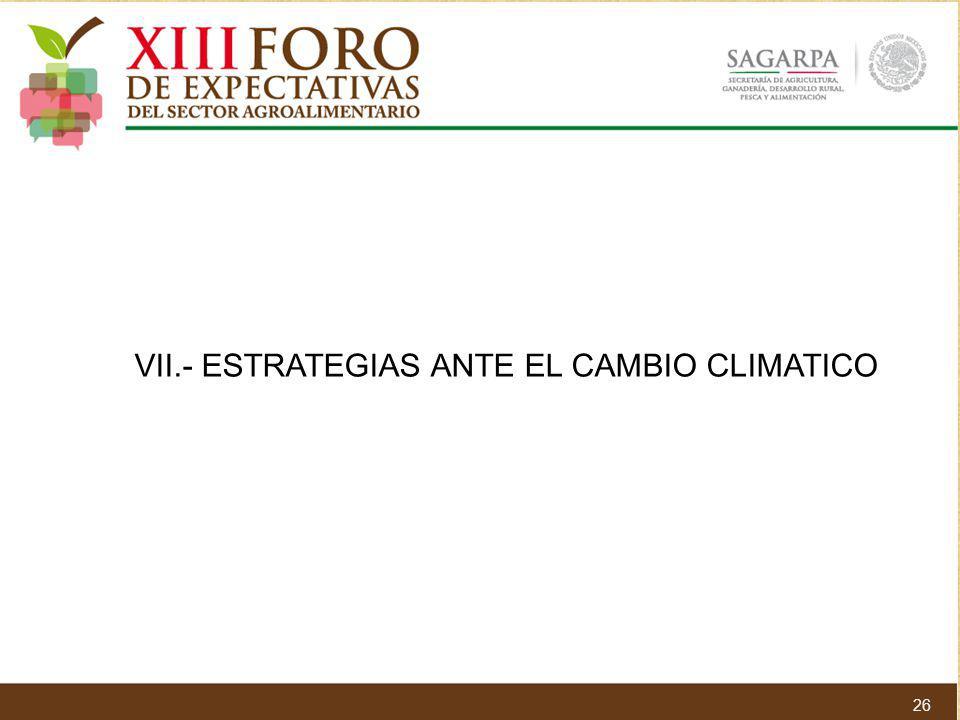 VII.- ESTRATEGIAS ANTE EL CAMBIO CLIMATICO