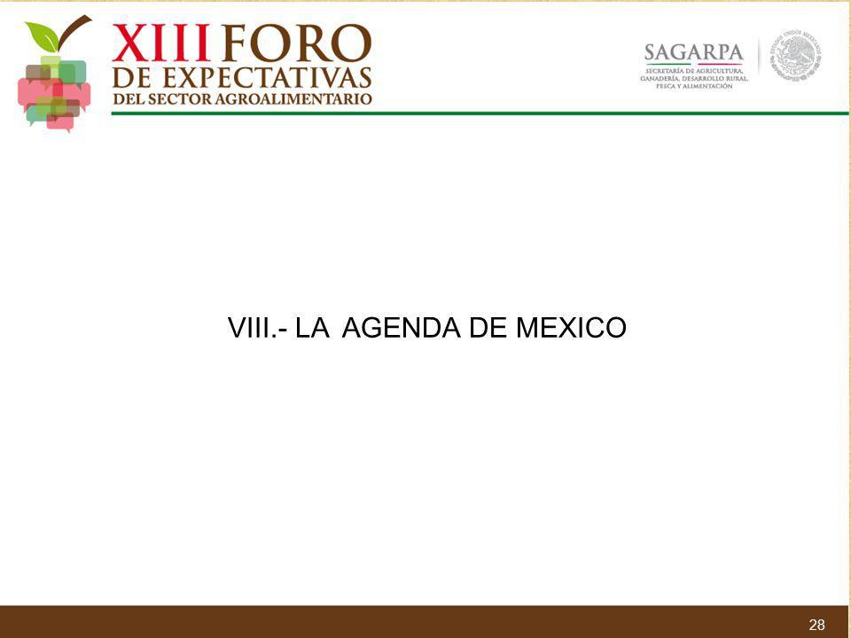 VIII.- LA AGENDA DE MEXICO